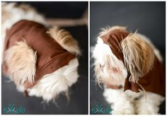 Whip up a Star Wars Ewok costume for your favorite furry friend with this incredibly simple no sew tutorial.