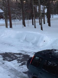 "Giant snow lizard ""Snowzilla"" sculpture  created by Dawn Gould."