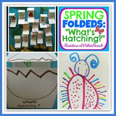 "Love this adorable, hands on activity from Rainbows Within Reach! ECE Spring ""Folded"" Books -- What's Hatching?"