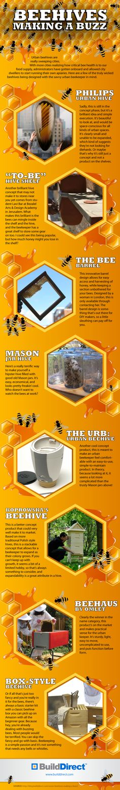 BuildDirect Beehives v1 copy Bees Bees Bees: Beekeeping in the 21st Century