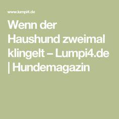 Wenn der Haushund zweimal klingelt – Lumpi4.de | Hundemagazin