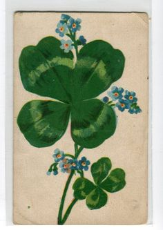 vintage Postcard shamrock with blue flowers by sharonfostervintage, $2.25