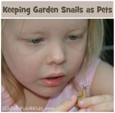 A great pet for kids - snails!