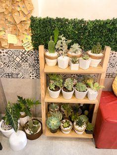Tea Amo Boba Bar - Milktea Shop - Vigan City Boba Bar, Ilocos, Vigan, Milk Tea, Shop Ideas, Succulents, City, Succulent Plants, City Drawing