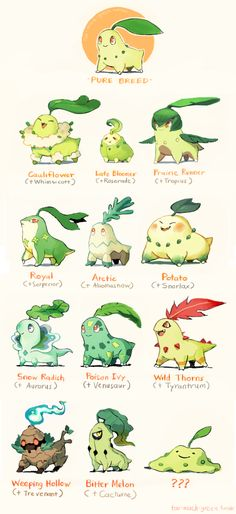 What If Cross Breeding Made Pokémon Look Different?^_^ Chikorita subspecies Also, I think the last one is ditto