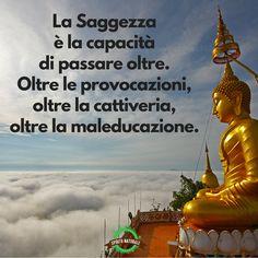 #aforismi #frasi #citazioni #spiritonaturale Positive Vibes, Positive Quotes, Wise Men Say, Osho, Dancing In The Rain, Dalai Lama, Beautiful Words, Funny Photos, Namaste