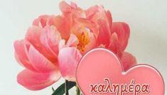 Καλημέρα-Καλό Σαβ/κο! (εικόνες) - eikones top Good Morning Beautiful Quotes, Good Night, Rose, Flowers, Plants, Facebook, Nighty Night, Pink, Plant