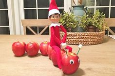 Most current Totally Free 10 hysterical new Elf on the Shelf ideas Elf on the Shelf riding apple caterpill. Strategies 10 hysterical new Elf on the Shelf ideas Elf on the Shelf riding apple caterpillar # Elf Ideas Easy, Awesome Elf On The Shelf Ideas, Elf Is Back Ideas, Elf On The Shelf Ideas For Toddlers, Christmas Activities, Christmas Traditions, Christmas Elf, Christmas Crafts, Christmas Kitchen