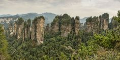 The Uniquely Tall and Thin Tianzi Mountains, China