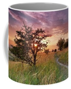 Sunset on the meadow, motive on coffee mug. For more pictures and materials visit my website. #coffeemug #fineartprint #sunsetonthemeadow #magicalsunset Photography Awards, Fine Art Photography, Wonderful Images, Beautiful Pictures, Camera Art, Unique Gifts For Men, Mugs For Sale, Travel Photographer, Beautiful Lights