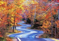 Wisconsin Fall Drives: Put some color in your autumn-Chicago Tribune