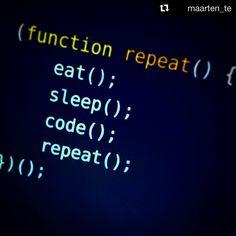 Repost Maarten Te Exit Coding Programming Coder Programmers WebdesignPhp