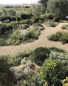 Luciano Giubbilei / The Mediterranean garden in Tuscan garden Mediterranean Garden Design, Tuscan Garden, Meadow Garden, Dry Garden, Coastal Gardens, Australian Garden, Small Garden Design, Plantation, Backyard Landscaping