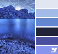night blues by Design Seeds ****guest bathroom colours Colour Schemes, Color Combos, Colour Palettes, Color Azul, Color Palate, Design Seeds, Colour Board, Deco Design, World Of Color