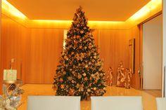 Erika Machado de Camargo.. Montagem e Desmontagem de árvore de Natal. http://www.clausprime.com.br
