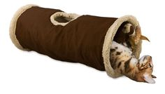 Túnel Find me Cat - AFP - Gatices