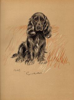 1937 LUCY DAWSON Vintage Colour Dog Print by GailsVintagePrints