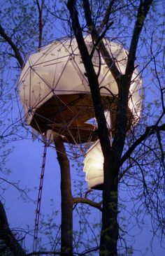 Glowing dome treehouse