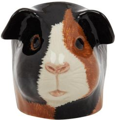 Guinea pig face egg cup from the Kitchen and Dining collection. Novelty china egg cup in the shape of a guinea pig face. From Liberty