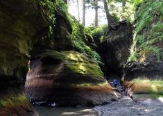 hiking-in-vancuver-island