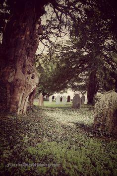 Digital Download  Gothic Church Image  Corpus by FlorriesAngels