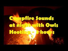 Campfire Sounds with Owls Hooting for Sleep, Study, Relax, ASMR - YouTube