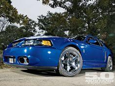 Mustang Cobra Terminator