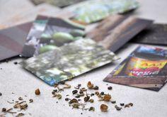 Samentütchen DIY mit Vorlage
