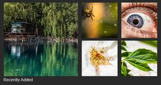 Shutterstock is a global marketplace for artists and creators to sell royalty-free images, footage, vectors and illustrations. We want to see the world through your eyes. Voss Bottle, Water Bottle, Royalty Free Images, Canning, Things To Sell, World, Gallery, Illustration, Artist