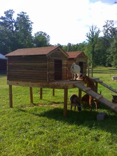 Goat Cabin for @Kristi Mullenaux :) even goats need a place to relax
