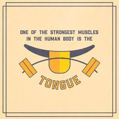 THE EIGHT MUSCLES that make up the tongue and hold it in place work almost constantly so that we can speak and eat, but they never get tired! Only heart muscle has better endurance than that!