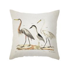 Complement a sleek sofa or classic bedding with this retro-inspired Bird on Land Pillow. Your feather friend is sure to make a classy conversation piece. With easy on and off access, you can easily cov...  Find the Bird on Land Pillow, as seen in the Naturalist's Sanctuary Collection at http://dotandbo.com/collections/naturalists-sanctuary?utm_source=pinterest&utm_medium=organic&db_sku=106713