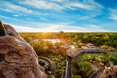 https://flic.kr/p/KefwDg | Last Rays | Today's photo tour sends us to Disney's Animal Kingdom for another awesome sunset. One thing I like to do is request the front seat so I can take a bunch of photos without getting the other riders heads in the way. I have taken some pretty neat shots by doing this. What's the one ride you go on where you enjoy taking photos? Have a magical day!  Visit Disney Photo Tour on Facebook and Instagram