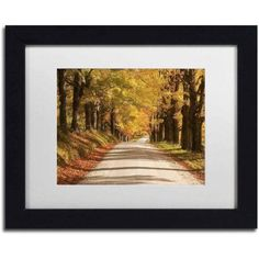 Trademark Fine Art 'Maple Canopy' Canvas Art by Michael Blanchette Photography, White Matte, Black Frame, Size: 11 x 14, Assorted