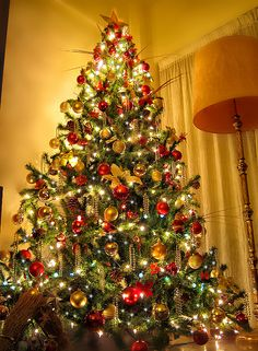 Mi Arbol de Navidad (My Christmas Tree) 2010, via Flickr.