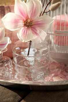 Riverdale pink flower