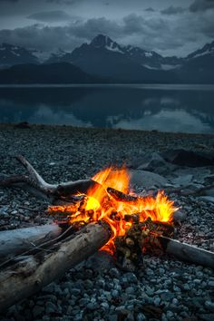 Campfire on Glacier Bay I Roland Taylor