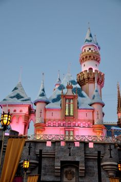 Travel Tips and Tricks: How to Do Disneyland with Young Kids!