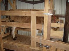 I finished my new milking stanchion. I mill my own lumber so i made it out of left overs. It is all mulberry except the frame of the feeding door is made out of old 2*4s because the mulberry was