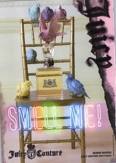 My absolute favourite perfume! Perfume Ad, Perfume Bottles, Juicy Couture Baby, Wild Photography, Tim Walker, Commercial Design, Fashion Colours, Color Schemes, Fragrance