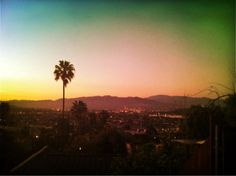 The view from my front lawn. Silverlake CA.