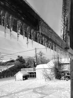 I liked the repetition of the icicles.
