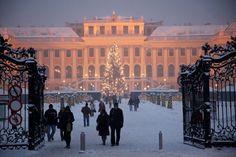 Christmas Market at Schönbrunn Palace, Vienna, Austria. ©️️ MTS / Gerhard Fally - http://www.schoenbrunn.at/en/services/media-center/photo-gallery/christmas-market-schoenbrunn.html