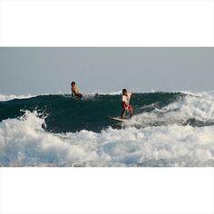 "Setyo Adhi Pamungkas on Instagram: "" #surf #surfer #surfing #ocean #beach #sea #wave #waves #sun #fun #nature #travel #ilovejogja #adventure #sport #aloha #parangtritis #jogja #explorejogja #indonesia"""