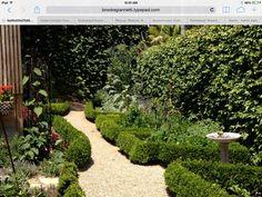 Gravel and boxwood for kitchen garden