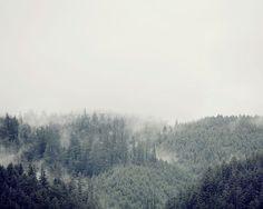 "Berg Fotografie, Bäume im Nebel Natur Kunstdruck, Landschaftsfotografie, große Wand Kunst Baum Print, grau grün ""Distant Dreams"""