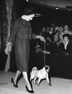 The Duchess of Windsor and her show pug...