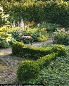 Part in semi-shade garden with boxwood bordered by flower beds with hostas and groundcovers, path and a single iron chair