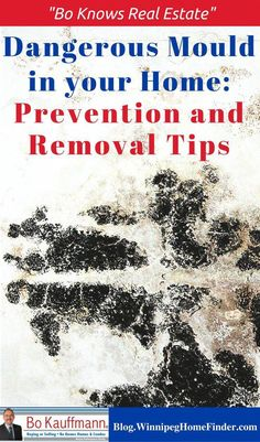 Mould Problems Remover Bathroom Making Mites