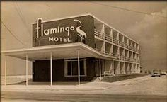 ocean city md. motel images | The Flamingo Motel has been family owned and operated by the Brous ...